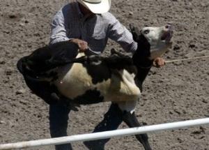Rodeo choke